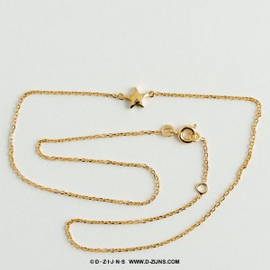 D-ZIJNS ketting gold plated little star